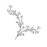 Ветвь серого масштаба декоративная с листьями иллюстрация вектора