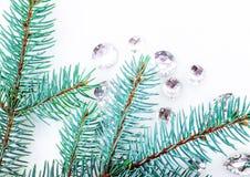 Ветвь сини елевая с кристаллами для украшения Стоковые Фото
