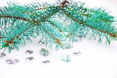 Ветвь сини елевая с кристаллами для украшения Стоковое Изображение RF