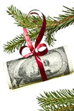 Ветвь спруса с долларами на белой предпосылке Стоковая Фотография