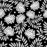 Ветвь с ягодами, безшовная картина рябины для иллюстрация штока