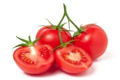 Ветвь томата с половиной изолированного на белой предпосылке Стоковые Изображения RF