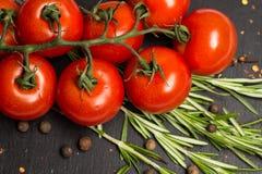 Ветвь томатов вишни зрелых, свежее розмариновое масло, allspice, фотография еды Стоковые Изображения