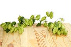 Ветвь хмелей на деревянном столе Стоковая Фотография