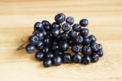 Ветвь rowanberry на таблице Стоковая Фотография RF