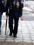 ветеран Стоковые Изображения RF