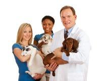 Ветеринар: Ветеринарная команда держит различных животных Стоковое Изображение