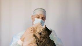 Ветеринар держит небольшую собаку и кот Они друзья и обнимают видеоматериал