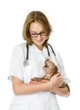 Ветеринар держа маленькую собаку sharpei щенка. Стоковая Фотография