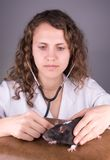 Ветеринар молодой женщины Стоковые Изображения RF
