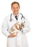 Ветеринар: Мужской ветеринар держит зайчика в оружиях Стоковое Изображение RF