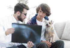 Ветеринар показывая рентгеновский снимок к предпринимателю собаки Стоковые Изображения