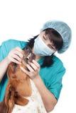 Ветеринар проверяя собаку Стоковая Фотография RF