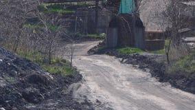 Ветер дует пыль на дороге глины около крупного плана завода акции видеоматериалы