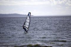 Ветер занимаясь серфингом на звуке Стоковое фото RF