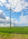 ветер зеленого цвета поля фермы Стоковая Фотография RF