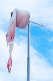ветер носка Стоковое Фото