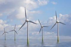 ветер парка Стоковая Фотография RF