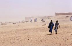 ветер песка стоковые фото
