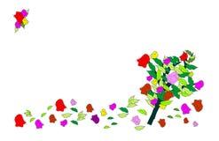 ветер роз Стоковое фото RF