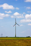 ветер силы завода Стоковое Изображение RF