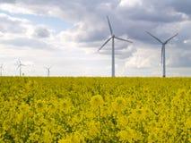 ветер силы заводов Стоковое Изображение