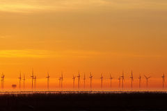 ветер силы природы энергии Стоковая Фотография