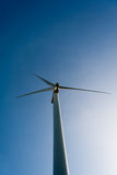 ветер силы Стоковые Изображения RF