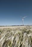 ветер стана зерна Стоковая Фотография