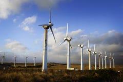 ветер турбины Гавайских островов поля Стоковое Фото
