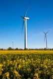 ветер турбины источника альтернативной энергии зеленый Стоковая Фотография RF