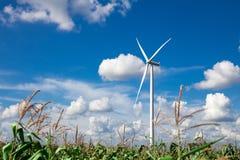 ветер турбины источника фермы альтернативной энергии Стоковое фото RF