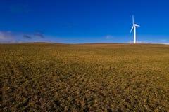 ветер турбины источника энергии зеленый Стоковые Фото