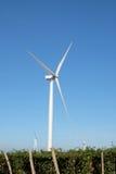 ветер турбины Таиланда Стоковое Изображение RF