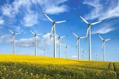 ветер турбин источника фермы альтернативной энергии Стоковая Фотография RF