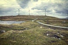 Ветер фермы в faroe Стоковые Изображения RF