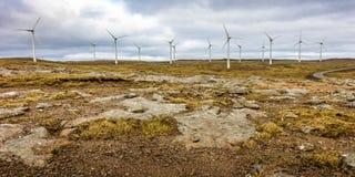 Ветер фермы в faroe Стоковая Фотография RF