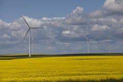 ветер фермы Стоковые Изображения