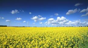 ветер фермы Стоковая Фотография