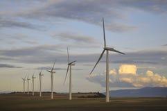 ветер фермы Стоковая Фотография RF