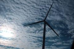 ветер стоковые изображения