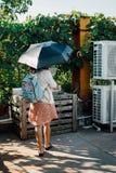 Ветреная женщина стоковые изображения rf