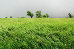 Ветреная погода в горах стоковое фото