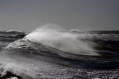 Ветреные волны Стоковые Фотографии RF