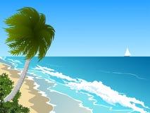 Ветреные голубые море и кокосовая пальма бесплатная иллюстрация