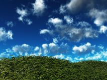 Ветреные холмы стоковые фотографии rf