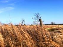 Ветреный и солнечный-частный привод Georgia Стоковая Фотография