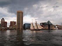 Ветрила рыся в внутренней гавани Балтимора Стоковые Изображения RF