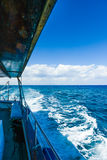 Ветрила яхты на море Стоковая Фотография
