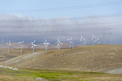 Ветровая электростанция в холме Ливермора золотом в Калифорнии стоковые фото